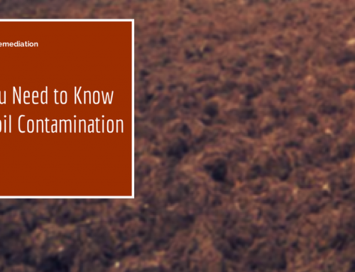 What You Need to Know About Soil Contamination