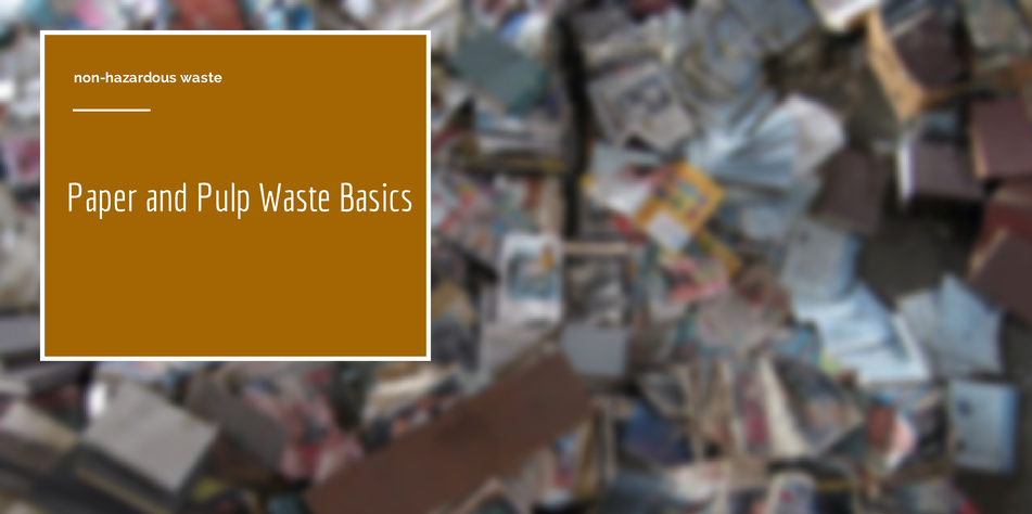 paper and pulp waste article cover photo