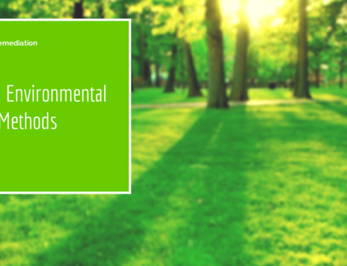 6 Proven Environmental Cleanup Methods